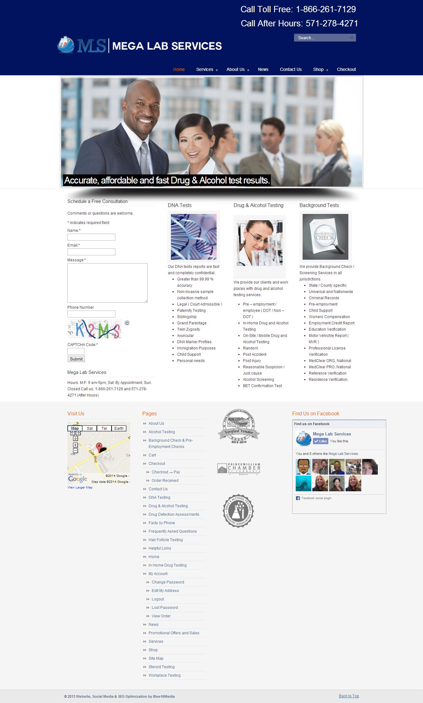 Mega Lab Services